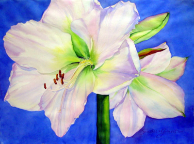 Watercolor painting of an amaryllis flower